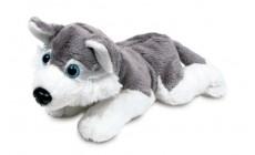 Plüschhund Husky